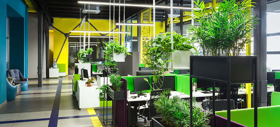 Aménagement de bureaux en vert, ça fait du bien !